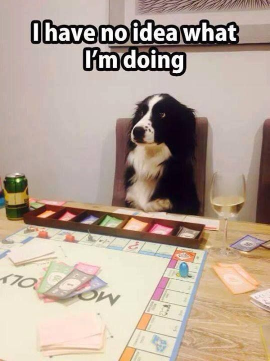 Monopoly Dog