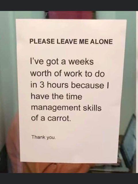 Please leave me alone I've got 3 weeks worth of work meme