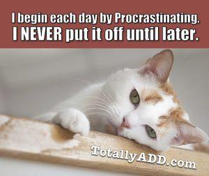 I Begin Each Day Procrastinating