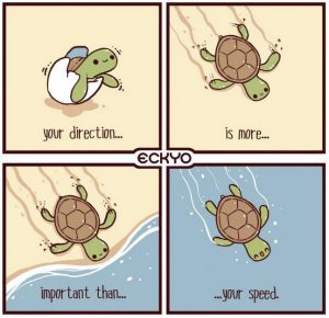 Your Direction Is More Important Than Your Speed
