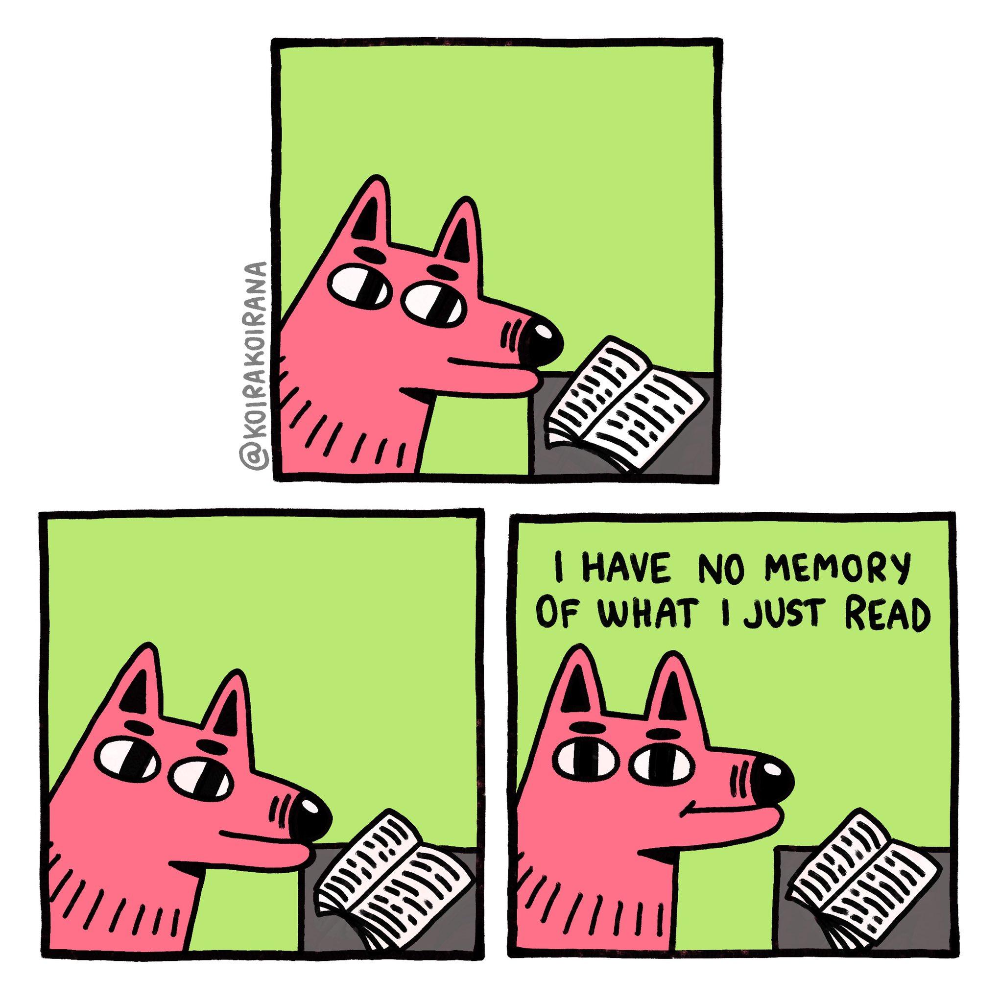 Don't Remember What I Read meme