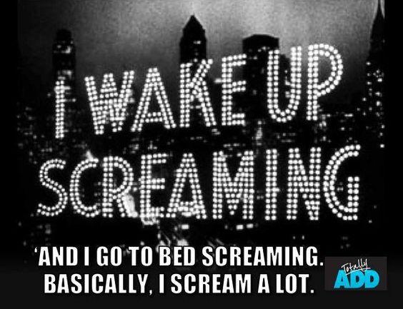 Meme I wake up screaming I go to bed screaming basically I scream a lot