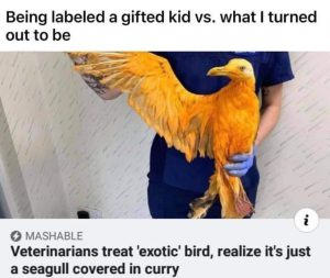 Meme about being gifted